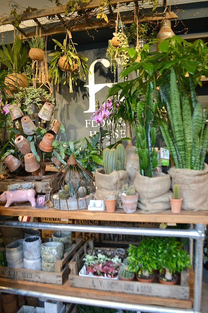 Flowerhouse, Arighi Bianchi
