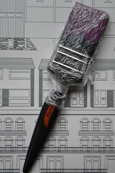 Paintbrush in clingfilm