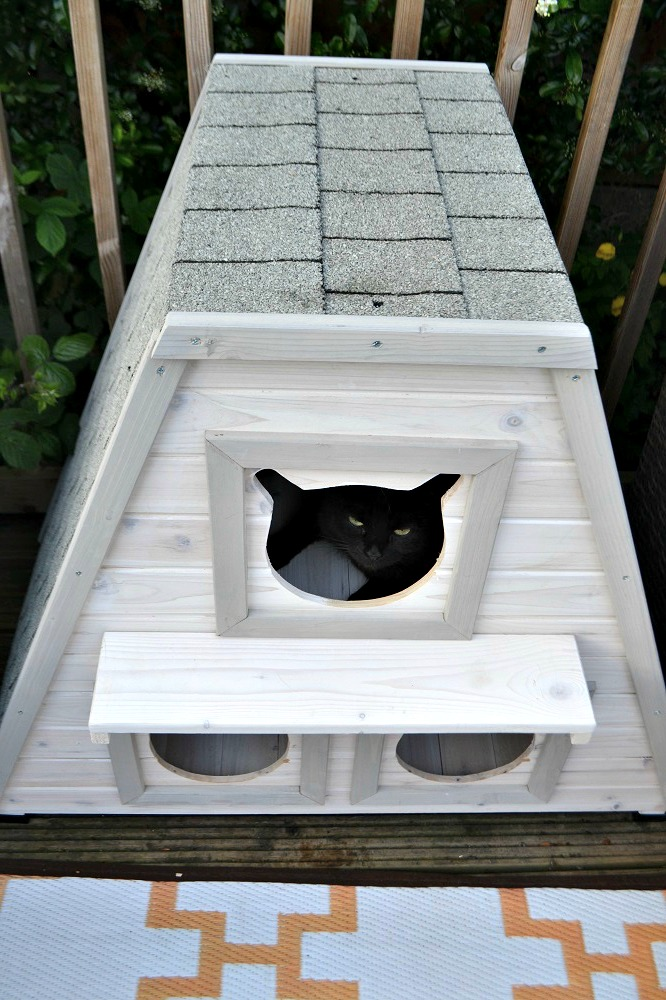 Garden shelter for cats