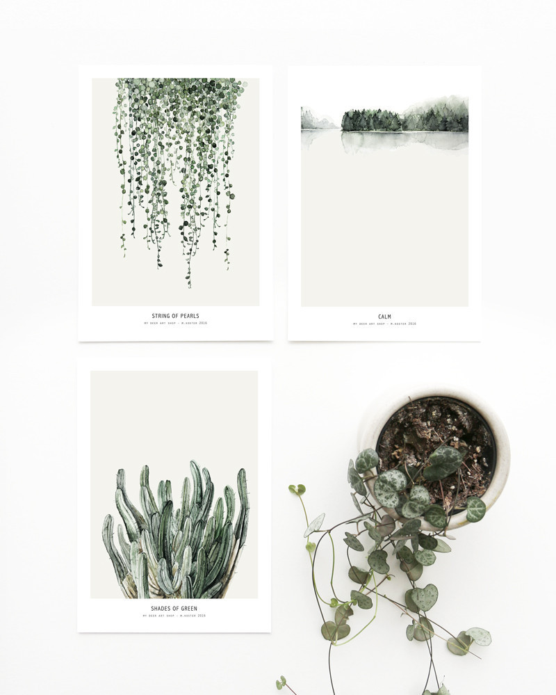 wall art botanical