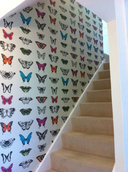 butterfly_wallpaper_sasha_interiors