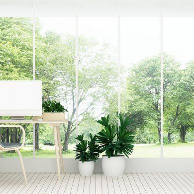 Garden pod