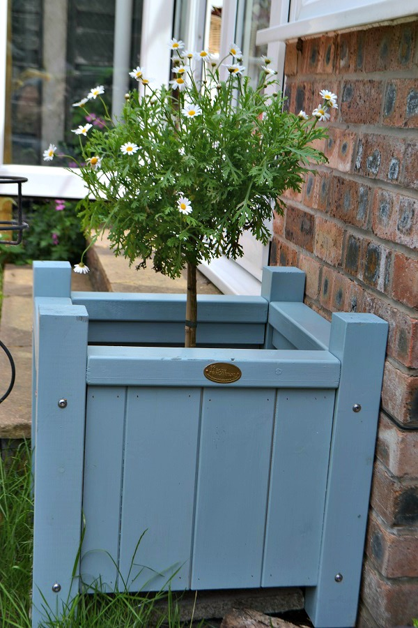 Posh Shed wooden Planter